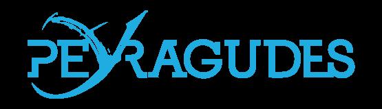 Logo Station Peyragudes